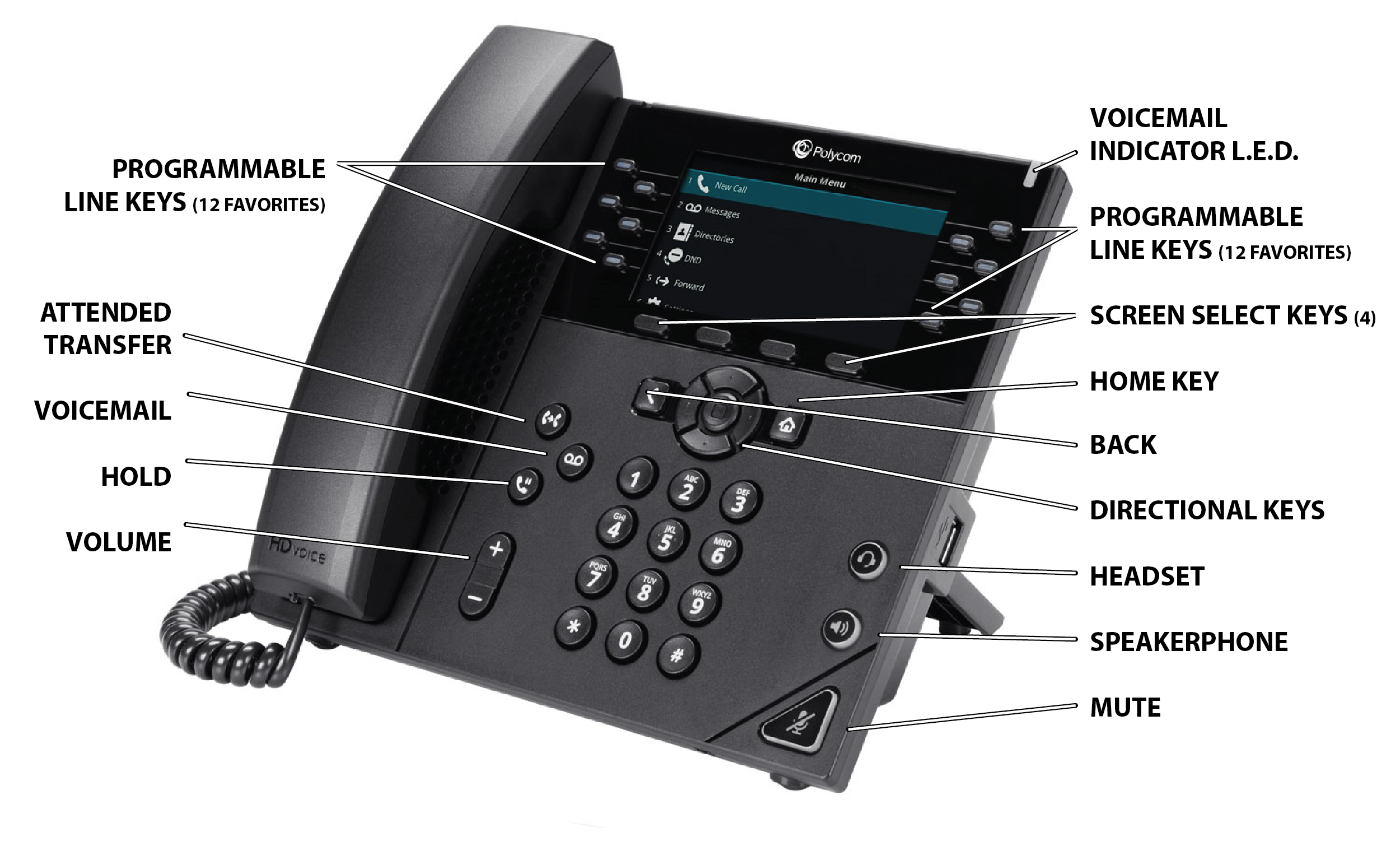 How to use a VoIP Phone, featuring the PolycomVVX450